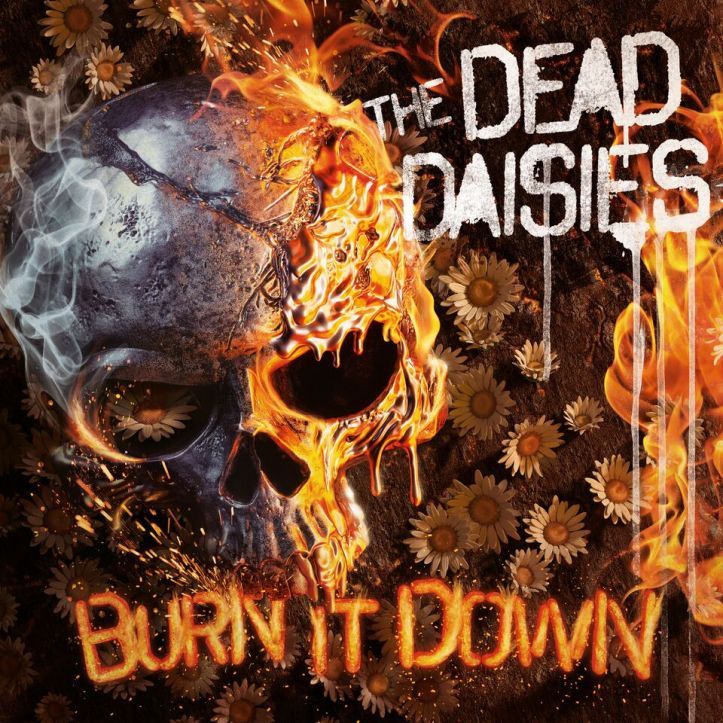 TDD Burn It Down Artwork